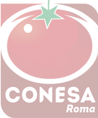 CONESA GROUP